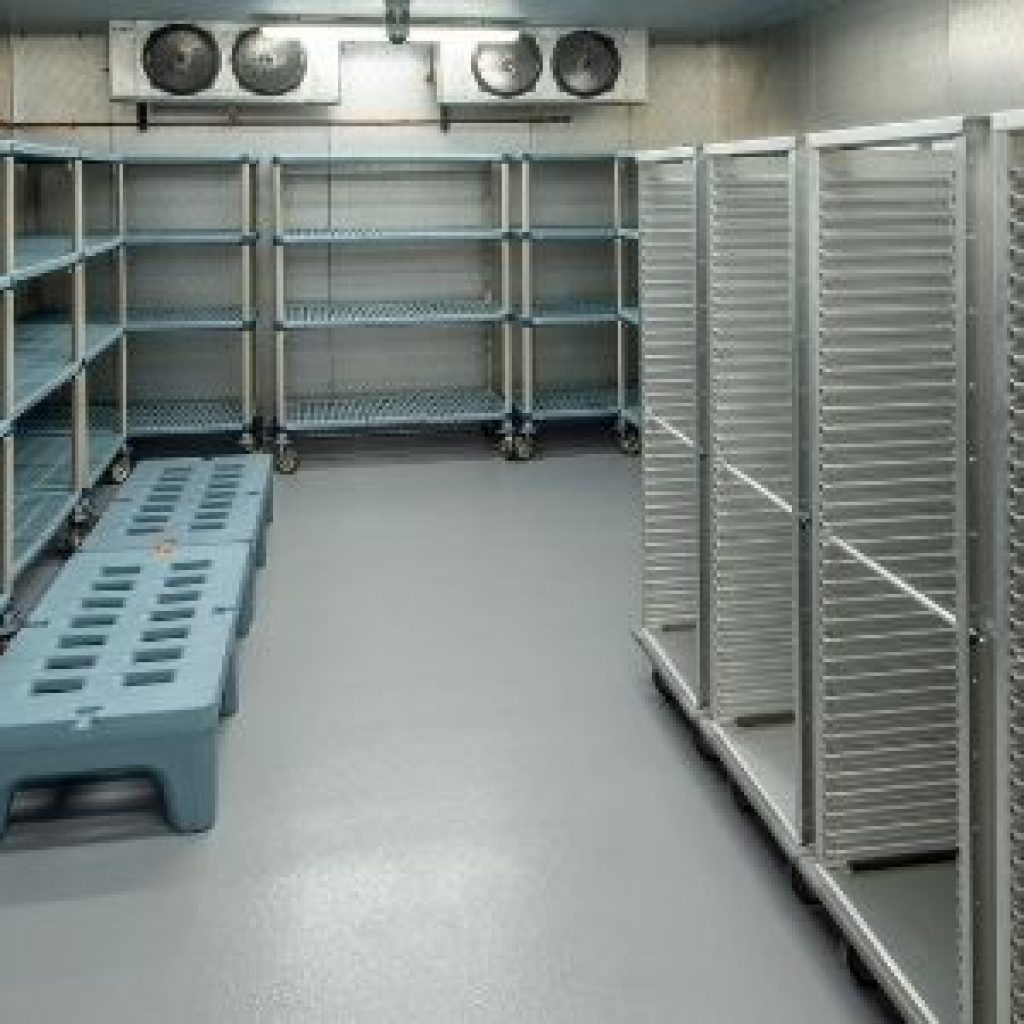 Freezer Cleaning Services
